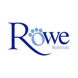 Experienced Ophthalmologist at ​Rowe Referrals (Bristol, UK)