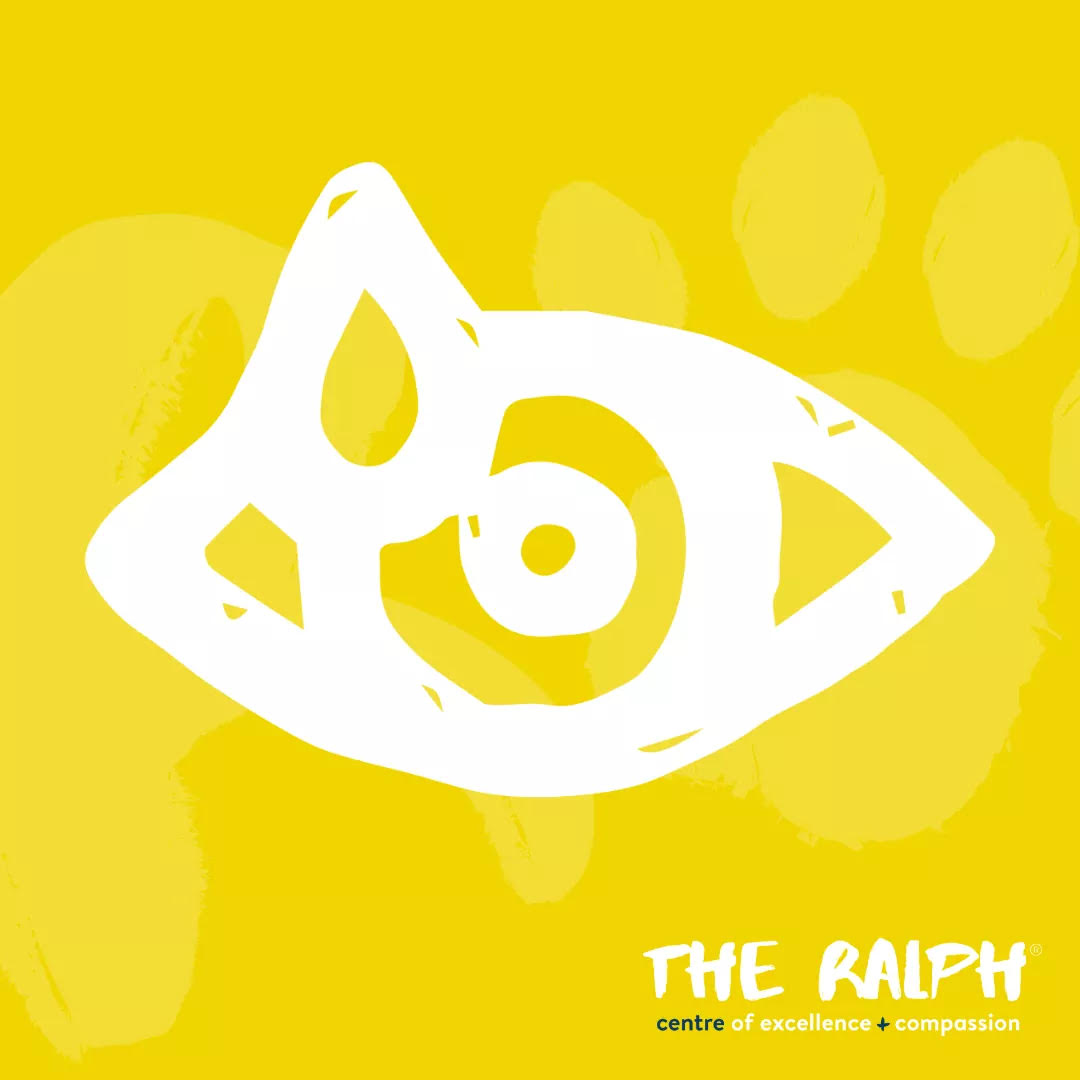 The Ralph Ophthalmology