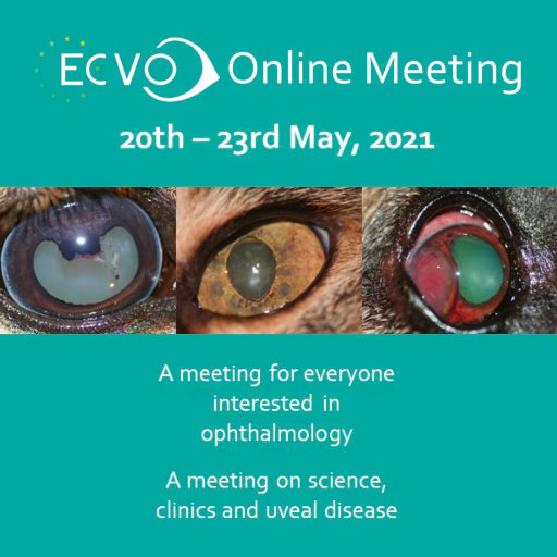"ECVO Conference 2021 Online – ""Uveal Disease"""